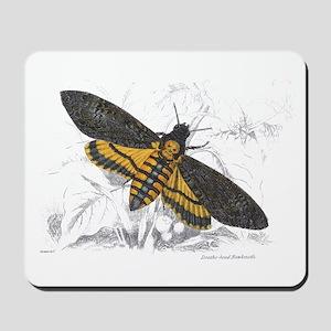 Deaths-head Hawkmoth Moth Mousepad