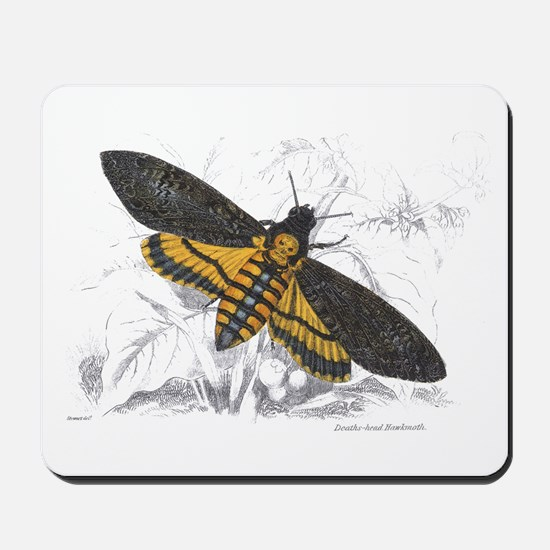 Deaths-head Hawkmoth Moth Mousepad