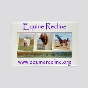 Equine Recline Rectangle Magnet