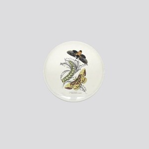 Moth Insects Mini Button