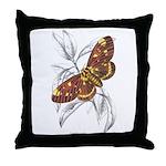 Dorycampa Regalis Moth Throw Pillow