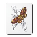 Dorycampa Regalis Moth Mousepad