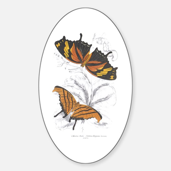 Butterfly Insects Oval Decal