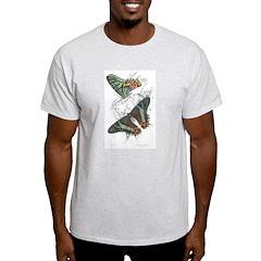 Madagascar Butterflies Ash Grey T-Shirt