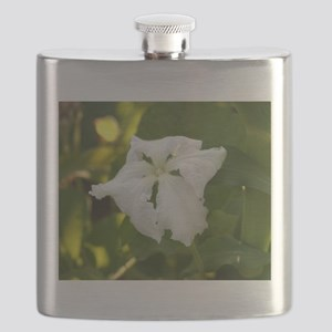 White Squash Flower Flask