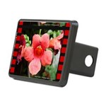BearClawPhotography Rectangular Hitch Cover