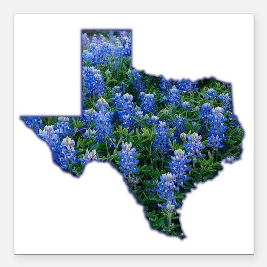 """Texas Bluebonnets Square Car Magnet 3"""" x 3"""""""
