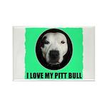 I LOVE MY PIT BULL Rectangle Magnet (10 pack)