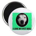 I LOVE MY PIT BULL Magnet