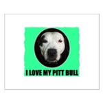 I LOVE MY PIT BULL Small Poster
