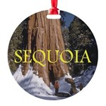 ABH Sequioa Round Ornament