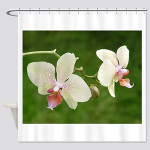 Powder Pink Orchids Shower Curtain