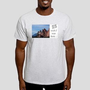 Ash Grey T-Shirt - GoG/Cheyenne