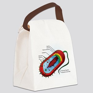 Bacteria Diagram Canvas Lunch Bag
