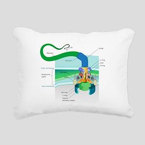 Morphology Rectangular Canvas Pillow