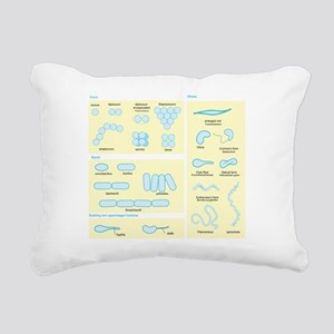 Morphology Rectangular Canvas Pillow