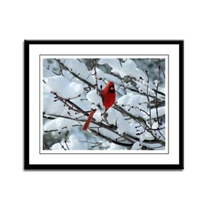 Snow Cardinal Framed Panel Print