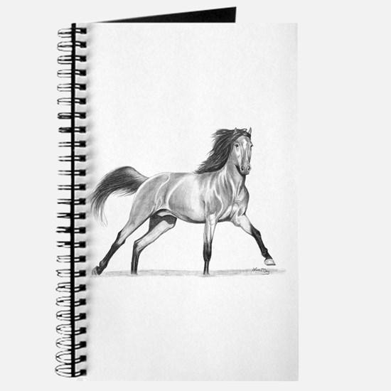 Buckskin Horse Journal