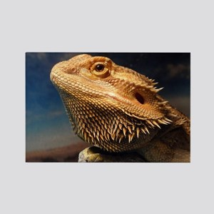 .young bearded dragon. Rectangle Magnet