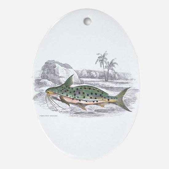 Catfish Fish Oval Ornament