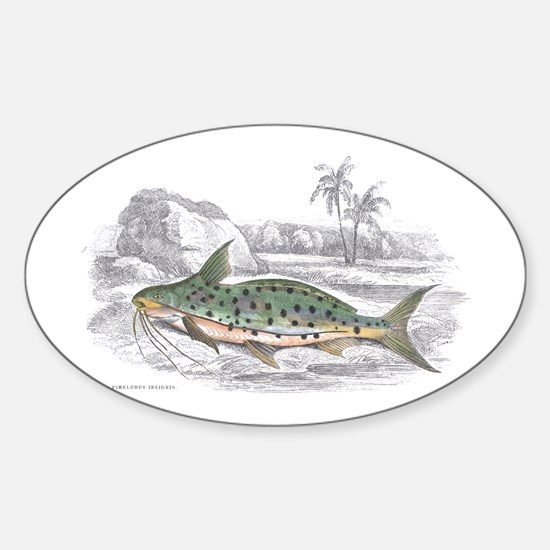 Catfish Fish Oval Decal