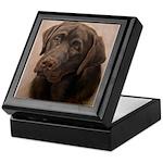 Chocolate Lab Portrait Painting Keepsake Box