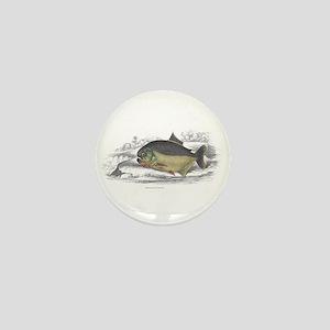 Serrasalmo Piranha Fish Mini Button