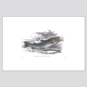 Trout Fish Large Poster