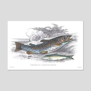 Trout Fish Mini Poster Print