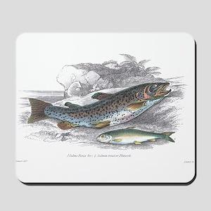 Trout Fish Mousepad