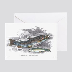 Trout Fish Greeting Cards (Pk of 10)