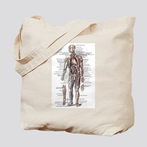 Anatomy of the Human Body Tote Bag