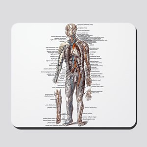 Anatomy of the Human Body Mousepad
