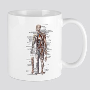 Anatomy of the Human Body Mug