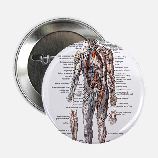 "Anatomy of the Human Body 2.25"" Button"