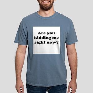 Are you kidding me Mens Comfort Colors Shirt
