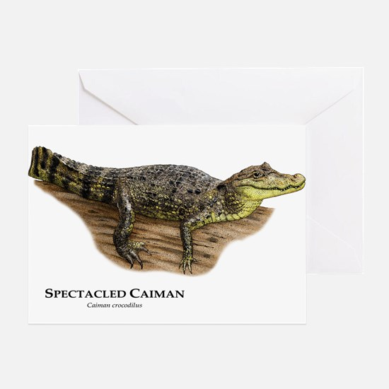 Spectacled Caiman Greeting Card