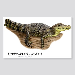 Spectacled Caiman Sticker (Rectangle)