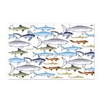 School of Sharks 1 Mini Poster Print
