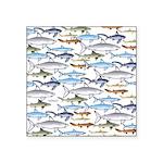 School of Sharks 1 Square Sticker 3