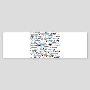 School of Sharks 1 Sticker (Bumper)