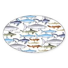 School of Sharks 1 Sticker (Oval)