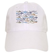 School of Sharks 1 Cap