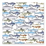 School of Sharks 1 Square Car Magnet 3