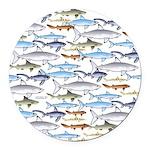 School of Sharks 1 Round Car Magnet