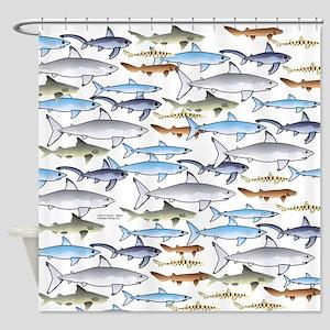 School of Sharks 1 Shower Curtain