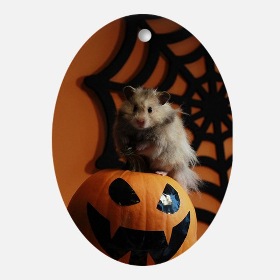Hamster 14 Ornament (Oval)