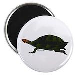 Giant Amazon River Turtle Magnet