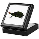 Giant Amazon River Turtle Keepsake Box