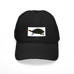 Giant Amazon River Turtle Black Cap